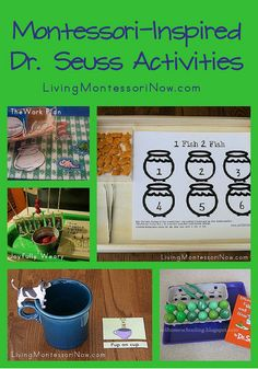 Montessori-Inspired Dr. Seuss Activities - roundup post with lots of ideas for home or classroom