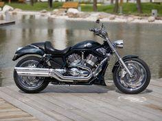 Road Passion Oil Filter for Harley Davidson VRSCR Street Rod//Night Rod 69/CI 2006/2007