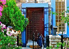 my Bodrum house door:)