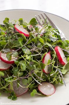 Microgreens Salad Recipe with Lime Vinaigrette Your ticket to an elegant and fresh side dish starts right here! This microgreens salad recipe with lime vinaigrette dressing is simple and delicious. Radish Recipes, Green Salad Recipes, Lime Recipes, Gourmet Recipes, Cooking Recipes, Healthy Recipes, Savoury Recipes, Radish Salad, Vinaigrette Dressing