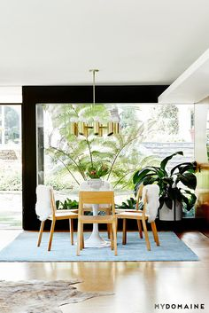 Lorna Jane's midcentury modern dining room with a large window, a black contrast wall, wood floors, a blue area rug, a cowhide rug, and wooden dining room chair