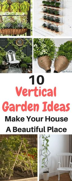 Vertical Garden Ideas Are At Your Disposal So Feel Free To Use This Guide And
