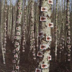 """Storm Thorgerson """"Eyes on Trees"""" from the album """"Wishville"""" by The Catherine Wheel"""