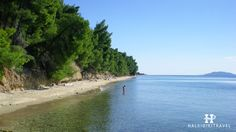 #Elia #Nikitis #beach in #Halkidiki. Visit www.halkidikitravel.com for more info. #HalkidikiTravel #travel #Greece