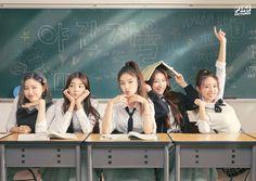 Kpop Girl Groups, Korean Girl Groups, Kpop Girls, Wattpad, Romance, Group Photos, These Girls, New Girl, South Korean Girls