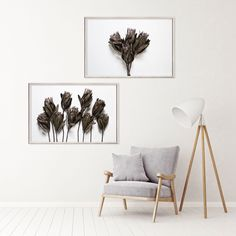 Muted tones and wood textures featuring one of the Dried Proteas print sets 🖤 South African Decor, South African Design, Art Prints For Home, Botanical Wall Art, Hallway Decorating, Contemporary Decor, Wall Art Prints, Gallery Wall, Plant