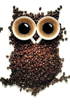 cups OWL