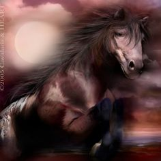 Horse Spirit... - Pesquisa Google