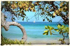 Sweet, Sweet, Paradise - Long Bay Beach British Virgin Islands, Sweet Sweet, Quality Time, Vacations, Caribbean, Paradise, Beach, Painting, Art