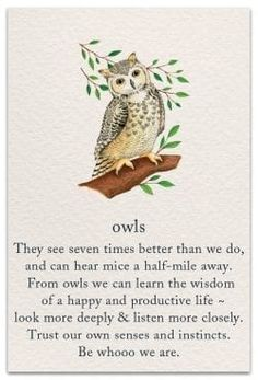 A very fresh approach to cards, these 100 illustrated designs feature popular symbols and their significance. Owl Quotes, Life Quotes, Owl Learning, Spiritual Symbols, Sanskrit Symbols, Yoga Symbols, Spiritual Love, Mayan Symbols, Viking Symbols