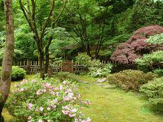 Portland Japanese Garden, Plants, Plant, Planets