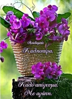 Good Afternoon, Good Morning, Happy Saturday, Plants, Greek, Inspiring Sayings, Buen Dia, Bonjour, Plant