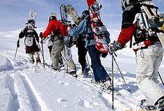 Snowboard - Freeride