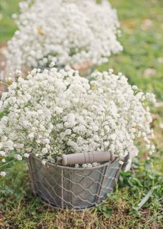 How to Plant Potted Flowers Outdoors in the Soil : Garden Space – Top Soop Types Of Bacterial Infection, Corset Back Wedding Dress, Maroon Wedding, Deco Floral, Shabby Flowers, Bride Look, Plus Size Wedding, Flower Arrangements, Wedding Flowers