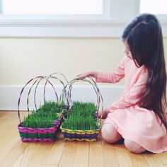 wheatgrass Easter baskets