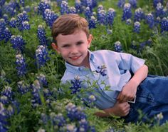 photographers in san antonio tx family photos in blue bonnets - Google Search