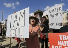 MINNEAPOLIS (AP) — The Minnesota dentist whose killing of Cecil the lion fueled a global backlash emerged Sunday for an interview in which he disputed some accounts of the hunt, expressed agitation at the animosity directed at those close to him and said he would be back at work within days.