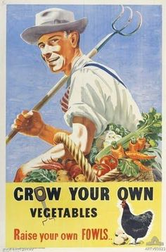 Turnips and Toile: Dig for Victory, victory garden Vintage Advertisements, Vintage Ads, Vintage Prints, Vintage Posters, Vintage Food, Vintage Images, Dig For Victory, Gallus Gallus Domesticus, Ww2 Posters
