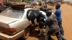 While Nigerian Muslims are preparing adequately for the forthcoming Eid-el-Kabir celebrations, a man and his family are getting re...