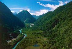 Parque Nacional Pumalin
