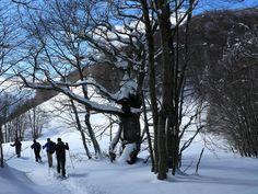 Skiing through Valle Fredda (Gran Sasso)
