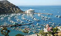 tripYIP.com - Visit Our Site For Fun Things To Do In Most Major Cities! Check out our LOS ANGELES, CA http://www.tripyip.com/uscities/losangeles.shtml page to find out about this fun attraction: CATALINA ISLAND  Catalina Island is a place where you can paddle through crystal clear waters in the crisp morning air, followed by Mai Tais and sun soaked massages on the beach in the afternoon.