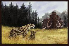 Homotherium latidens by Leogon.deviantart.com on @deviantART