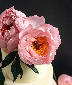 Member Make Live Tutorial: Crepe Paper Coral Supreme Peony - Lia Griffith Making Tissue Paper Flowers, Paper Flower Art, How To Make Paper Flowers, Crepe Paper Flowers, Flower Crafts, Flower Making, Paper Peonies, Paper Roses, Alice In Wonderland Tea Party Birthday