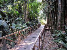 La Laguna Botanical Gardens - El Salvador - community action for sustainability - CASwiki