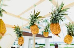 Planning a tropical or a coastal wedding? Pick pineapples for your wedding décor! Pineapples are super fun and creative and easy to incorporate into your wedding theme. Cut a pineapple and use. Tropical Bridal Showers, Tropical Party, Tropical Decor, Luau Theme Party, Party Themes, Luau Decorations, Wedding Decorations, Image Deco, Hawaiian Luau