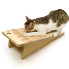 cat scratching board has different surfaces for scratching! fabric, cardboard, sisal, carpet and wood AND can set it angled, upright, or horizontal.