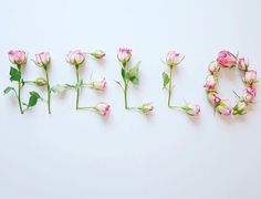 48 New ideas flowers quotes wallpaper words 48 New ideas flowers quotes wallpaper words The post 48 New ideas flowers quotes wallpaper words appeared first on Diy Flowers. Flower Text, Flower Words, Flower Logo, Flower Quotes, Love Flowers, Diy Flowers, Vintage Flowers, Beautiful Flowers, Love Wallpaper