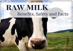 Learn how raw milk boasts uniquely healthful properties in contrast to pasteurized milk.