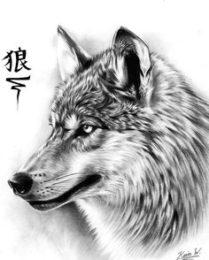 Guardian by Spectrum-VII on DeviantArt Animal Sketches, Animal Drawings, Art Sketches, Wolf Drawing Easy, Owl Tattoo Drawings, Snarling Wolf, Wolf Hybrid, Wolf Tattoo Sleeve, Wolf Sketch
