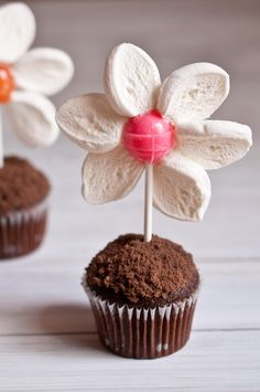 Spring Flower Pot Mini Muffins    Supplies:    12 chocolate mini muffins    12 small suckers (dum dum sized)    18 standard size marshmallows    3 microwave save bowls    1/4 cup white chocolate    1 pair scissors    1/2 cup chocolate chops    1/2 cup chocolate graham crackers (or chocolate Teddy Grahams)