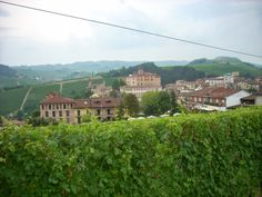Cuneo e dintorni: Collisioni