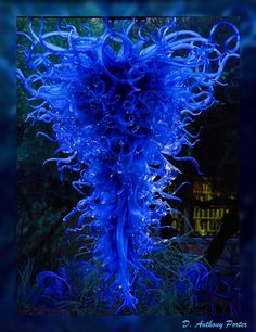 Chihuly glass sculpture from Phoenix Desert Botanical Gardens...the man is amazing!