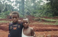 WWF-funded ecoguards have evicted Baka tribespeople from their forest home, and been complicit in serious human rights abuse