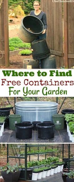 Gardening Hacks, Where to Find Free Containers, free Garden Supplies, Gardening 101, Recycled Garden Containers