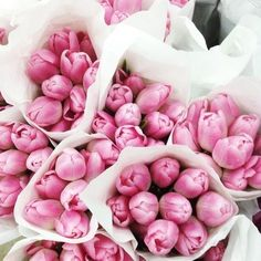 Pretty pink bouquets of tulips.