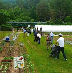 Super summer crops, upcoming classes and more all here! http://www.cedarcirclefarm.org/newsletter/entry/summer-rolls-on