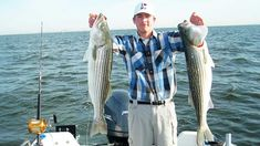 30 Best Striped Bass Lures and Baits in 2021 | By Captain Cody Bass Fishing Lures, Surf Fishing, Striped Bass Lures, Saltwater Fishing Gear, Fish Bites, Fishing Report, Fishing Guide, Bait, Fishing Jig