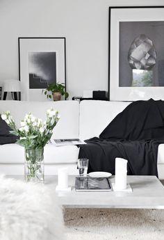 Black and white livi...