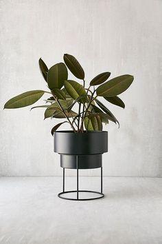 Moderne Grünpflanzen noa 12 metal planter stand botanicals