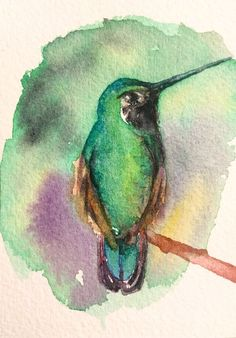 Details about Original Watercolor Chickadee Bird Painting ACEO Art Card Green Watercolor, Watercolor Print, Watercolor Illustration, Watercolor Paintings, Watercolours, Green Paintings, Paintings Of Birds, Whale Painting, Watercolor Hummingbird