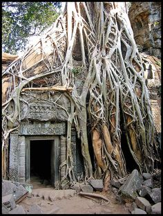Ta Phrom is a temple in the jungles of Cambodia. Actually the only bit of jungle remaining is around the temple. While other monuments in the Angkor region have been cleared of the encroaching jungle, Ta Phrom has been left as it was found by the French explorers.