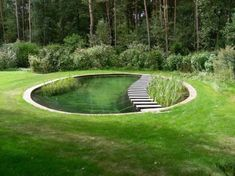round pond with aquatic plants and bridge round lawn and trees around