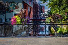 Jak ukwiecić mosty? Skrzynie kwiatowe do zadań specjalnych - Inspirowani Naturą Flower Boxes, Flowers, Cities, Sidewalk, Decor, Window Boxes, Decoration, Planter Boxes, Side Walkway