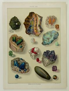 Precious Stones Gems Antique 1904 Color Chromolithograph Print Diamond Saphire Ruby Opal Emerald Topaz Turquoise Amethyst Cats Eye #rocks #minerals #gem #gemstone #lapidary