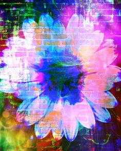Mo Davies, digital art: Purpose